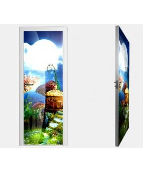 """Межкомнатные стеклокаркасные двери. Модель """"07 F"""". Фабрика Аксиома. Покрытие зеркало. фотопечать"""